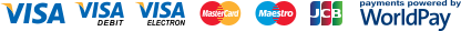 Visa Credit, Visa Debit, Visa Electron, MasterCard Credit, MasterCard Debit, Maestro, JCB, Payments powered by WorldPay